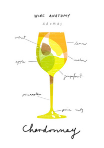 Decorative food, modern, contemporary 'Wine Anatomy: Chardonnay' graphic art prints by Ana Zaja Petrak