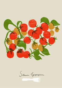 Decorative food, modern, contemporary 'Cherry Tomatoes' graphic art prints by Ana Zaja Petrak