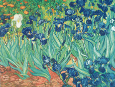 Vincent van Gogh art print 'Irises in the Garden' Landscape art prints by King and McGaw